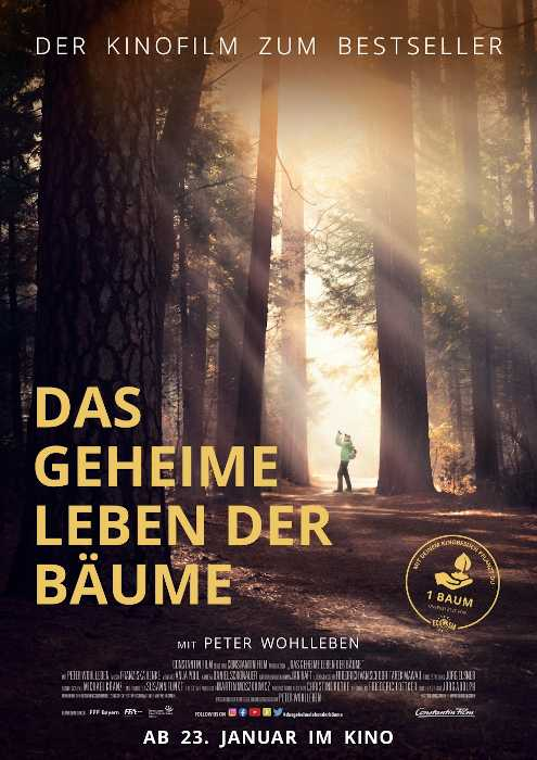 © 2019 Constantin Film Verleih GmbH