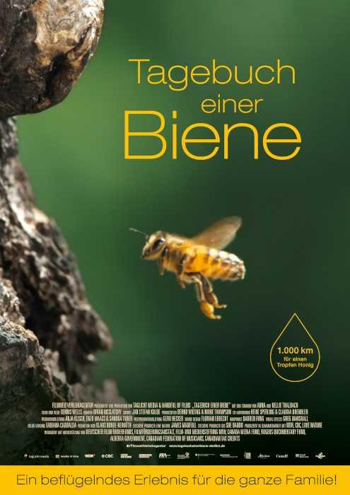 © Filmwelt Verleihagentur GmbH